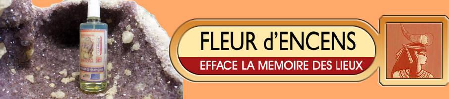FLEUR D-ENCENS-EFFACE LA MEMOIRE DES LIEUX